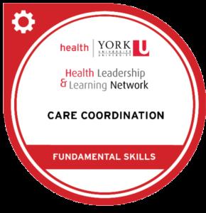 Digital Badge Fundamental Skills